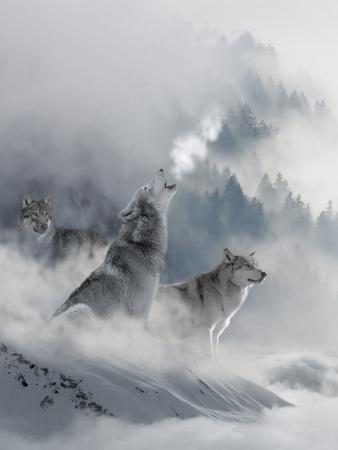 Fantasy Wolf Prints by  Wonderful Dream