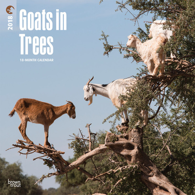 Goats in Trees - 2018 Calendar Kalendrar