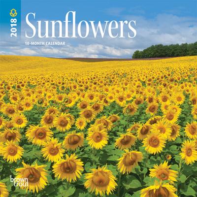 Sunflowers - 2018 Mini Calendar Calendari
