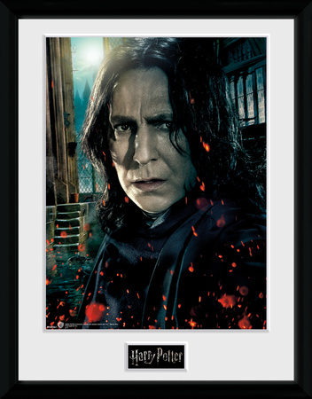 Harry Potter - Snape Collector-tryk