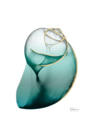 Shimmering Snail 3 Poster by Albert Koetsier