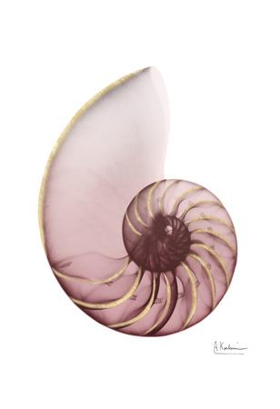 Shimmering Blush Snail 1 Prints by Albert Koetsier