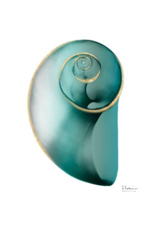 Shimmering Snail 2 Posters by Albert Koetsier