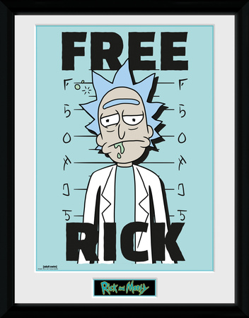 Rick & Morty - Free Rick Collector-tryk