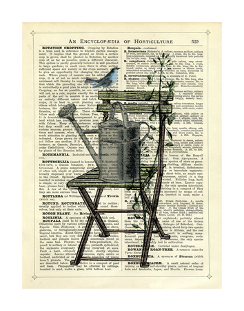 Gardener's Chair Prints by Marion Mcconaghie