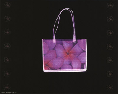Flowered Purse Posters