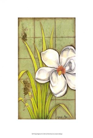 Sugar Magnolia I Print by Jennifer Goldberger