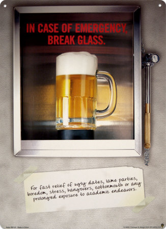 In Case of Emergency Break Tin Sign
