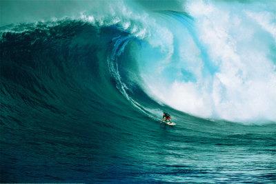 Vamos a coger unas olas Póster