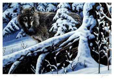 Silent Snowfall Limited Edition by Cyril Cox