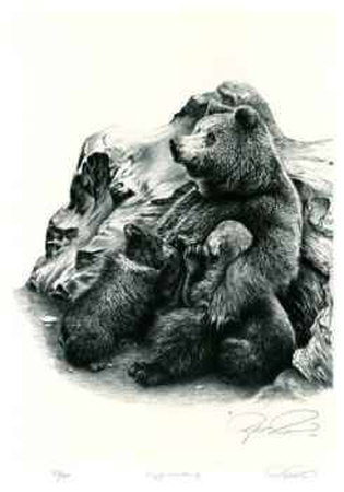 Grizzly Bear Family Limited Edition by Robert Pow