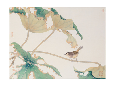 Bird on Lotus Leave Giclee Print by Hsi-Tsun Chang
