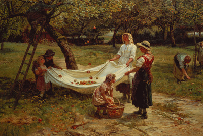 The Apple Gatherers, 1880 Premium Giclee Print by Frederick Morgan