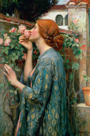 The Soul of the Rose, 1908 Premium Giclee Print by John William Waterhouse