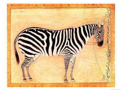 "Zebra, from the ""Minto Album,"" Mughal, 1621 Premium Giclee Print by Ustad Mansur"