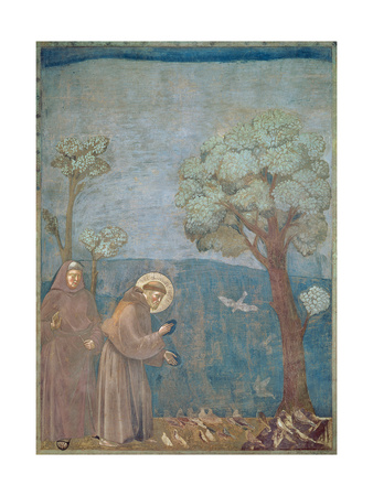 St. Francis Preaching to the Birds, 1297-99 Premium Giclee Print by  Giotto di Bondone