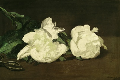 Branch of White Peonies and Secateurs, 1864 Premium Giclee Print by Édouard Manet