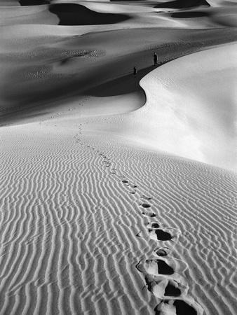 Footprints on Desert Dunes Photographic Print by  Bettmann