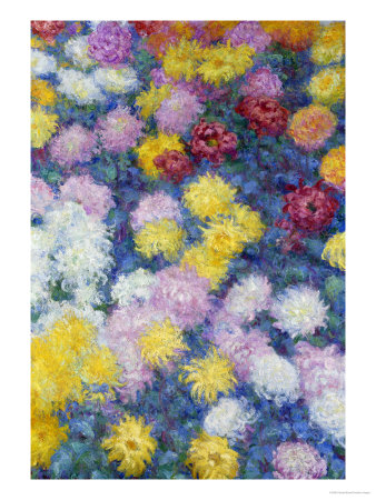 Chrysanthemums, 1897 Premium Giclee Print by Claude Monet