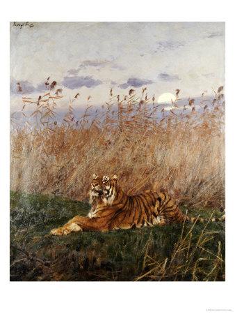 Tiger in the Rushes Giclée-Druck von Geza Vastagh