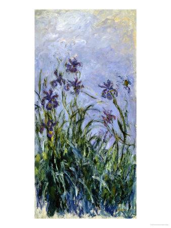 Iris Mauves, 1914-1917 Giclee Print by Claude Monet