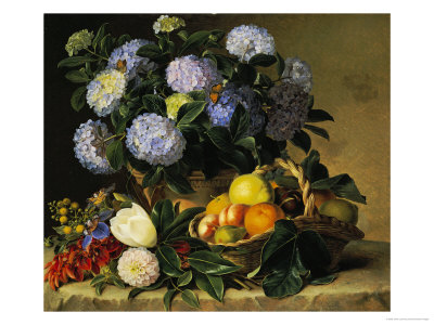 Hydrangea in an Urn and a Basket of Fruit on a Ledge Premium Giclee Print by Johan Laurentz Jensen