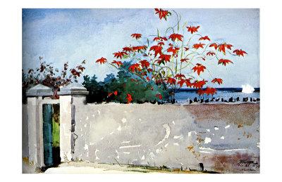 Wall Nassau Giclee Print by Winslow Homer