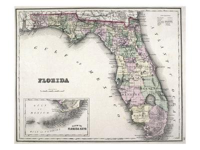 Florida Giclee Print