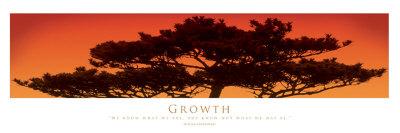 Growth Art