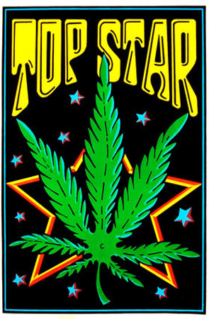 Top Star Blacklight Poster
