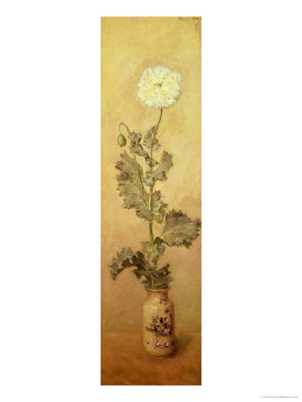 White Poppy, 1883 Giclee Print by Claude Monet