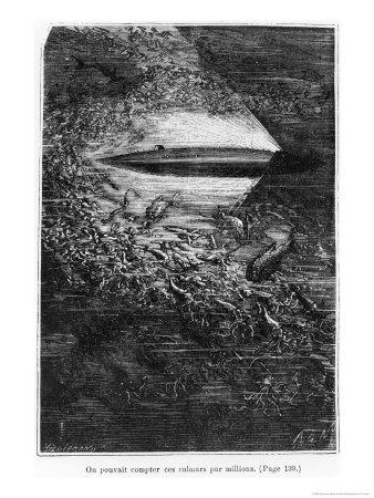 Los ilustradores del siglo XIX Neuville-alphonse-marie-de-illustration-from-20-000-leagues-under-the-sea