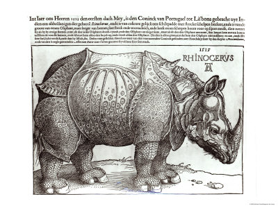 Rhinoceros, Print Given to Maximilian I by the King of Lisbon, 1515 Gicléedruk
