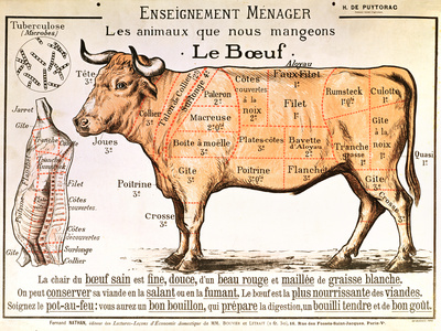 Beef: Diagram Depicting the Different Cuts of Meat Giclee Print