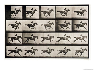"Jockey on a Galloping Horse, Plate 627 from ""Animal Locomotion,"" 1887 Giclée-Druck von Eadweard Muybridge"