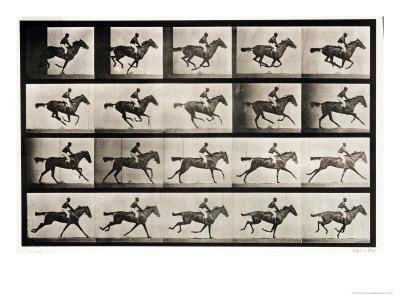 "Jockey on a Galloping Horse, Plate 627 from ""Animal Locomotion,"" 1887 Giclee Print by Eadweard Muybridge"