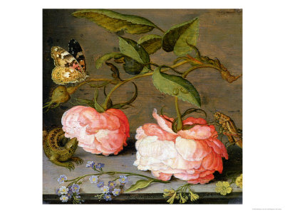 A Still Life with Roses on a Ledge reproduction procédé giclée