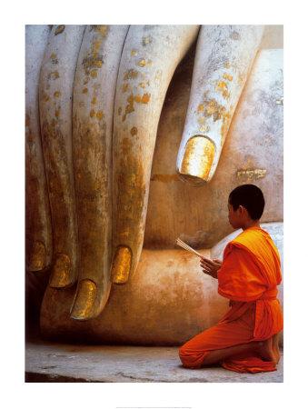 The Hand of Buddha Prints by Hugh Sitton