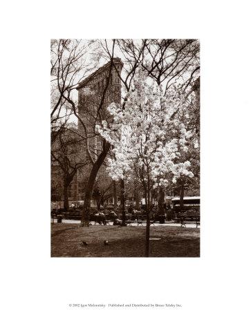 Flatiron Building, Spring Posters by Igor Maloratsky