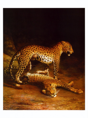 Two Leopards Playing in the Exeter Change Menagerie, c.1808 Art Print