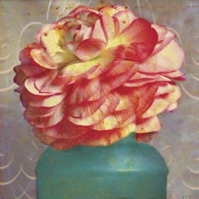 Floral Study IV Prints by Sally Wetherby