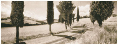 Road Through Tuscany Art by Michael Hudson