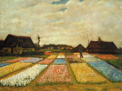 Champs de fleurs en Hollande, vers 1883 Reproduction d'art