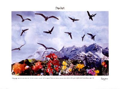A Dozen Seagull, c.1997 Art by Peter Hutchinson