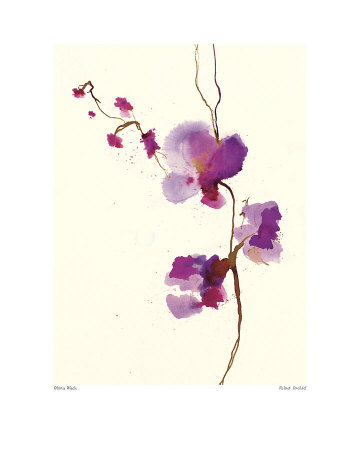 Velvet Orchid Poster by Olivia Wade