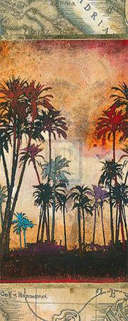 Tahitian Sunset I Posters by Edwin Douglas