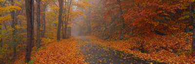 Autumn Road, Monadnock Mountain, New Hampshire, USA Photographic Print by  Panoramic Images