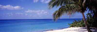 7 Mile Beach, West Bay, Caribbean Sea, Cayman Islands Photographic Print by  Panoramic Images