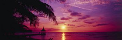 Solnedgang, palmetræer, strand, vand, hav, Montego-bugten, Jamaica Fotografisk tryk af Panoramic Images,