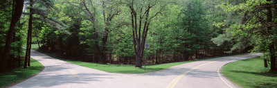 Fork in a Road Surrounded by Trees, Park Road, Letchworth State Park, New York State, USA Photographic Print by  Panoramic Images